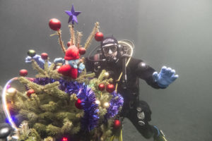 Underwater Christmas tree